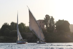 Feluccas on the Nile River, Egypt