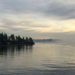 Misty Seattle