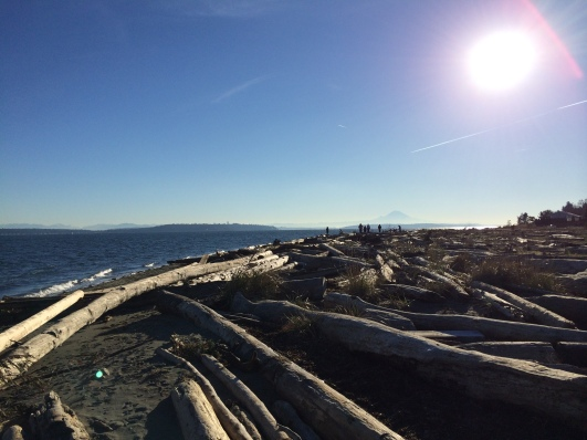 Bainbridge Island Beach