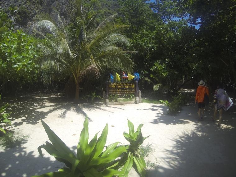 Welcome to Maya Bay, Krabi, Thailand!