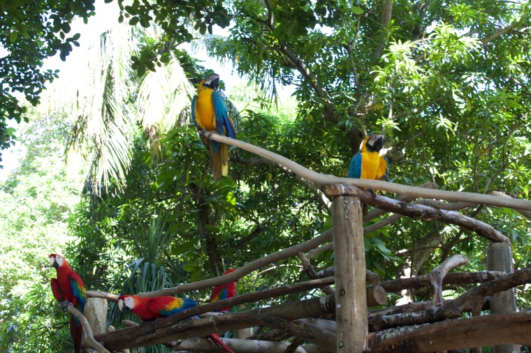 Port of Cartagena - Wildlife Park